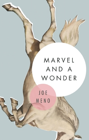 Marvel and a Wonder, Joe Meno (2015)